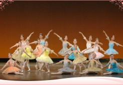 2008年 岡崎定期公演